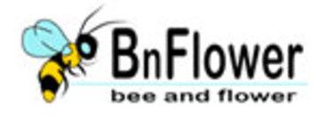 Bnflowerlogo_1